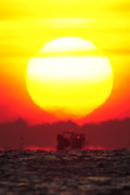 [희망 2015]붉게 떠오르는 태양에서 희망을 보다