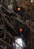 사당종합체육관 공사현장 천정 붕괴, 수색작업 벌이는 구조대원과 구조견