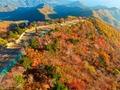 가을의 선물...발왕산 단풍