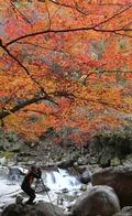 지리산 칠선계곡의 가을