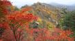 깊어가는 가을 '물드는 설악 단풍'