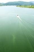 '녹색으로 변한 낙동강 상류'