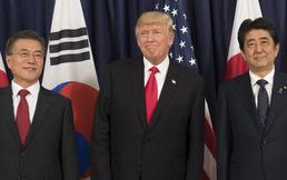 문재인 대통령 평화외교