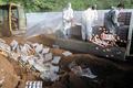 '살충제 계란' 폐기하는 방역당국