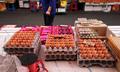 계란 매출 '뚝'… 살충제 쇼크에 등 돌린 소비자