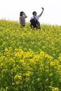 노란 유채꽃과 함께하는 추억
