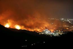'망연자실' 강원 산불…