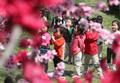 어린이들의 봄나들이