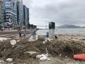 태풍이 남기고 간 해초와 쓰레기