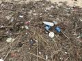 해변에 밀려온 플라스틱 쓰레기