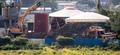 '아프리카돼지열병 발병' 매몰작업 한창인 발병농가
