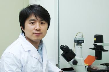 IBS 연구단, 약물전달효과 극대화 한 전달체 개발