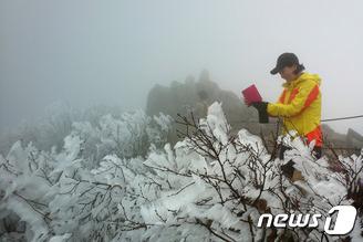 설악산 대청봉 상고대 만개