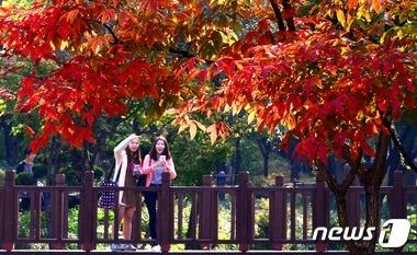 가을 나들이