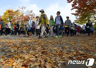 사뿐사뿐 가을길 걷기