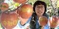 거창 '수능대박' 사과 수확