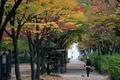 '깊어가는 가을의 정취'