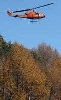 산양삼 종자 항공 살포