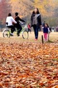 '낙엽을 밟으며'
