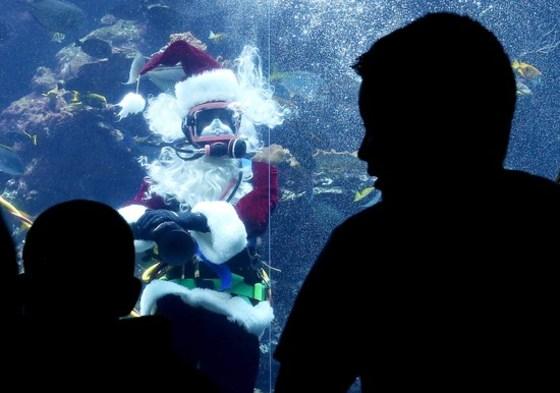 물속의 산타클로스