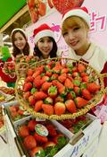 '제철 과일 딸기, 드셔보세요'