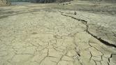 마른장마에 강수량 줄고 기온 올라가…농민들