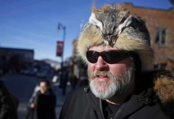 여우머리 달린 모자 쓴 포브스 회장