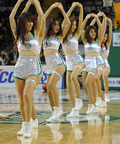 동부-전자랜드 '치어리더는 농구코트의 꽃'