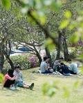 서울 초여름 날씨 '그늘을 찾아서'