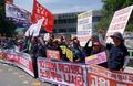 '동양시멘트 집단 해고사태 해결하라'