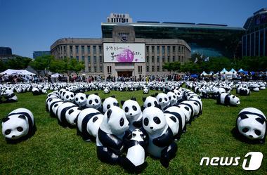 서울광장 점령한 1600마리 판다