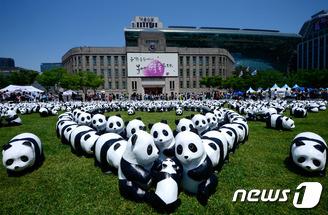 서울광장 점령한 1600마리 종이 판다