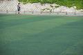 서울시내 학교 운동장 '인조잔디 사라진다'