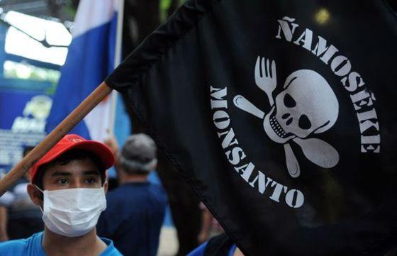 파라과이 '몬산토 물러가라'시위