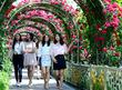천만송이 장미꽃 터널