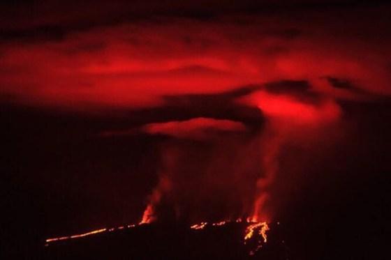 갈라파고스 화산 울프 '폭발'
