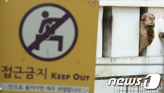 보건당국, 서울 메르스 의심 '자택 격리' 환자 놓쳐(종합)