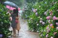 '비 오는 날의 수채화'