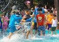 '한 여름의 물놀이'