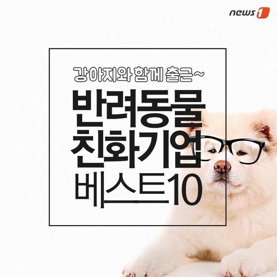 [펫카드]반려동물과 동반출근까지…'반려동물 친화기업' 베스트10