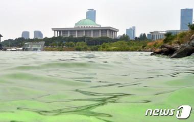 녹색비상 국회와 한강