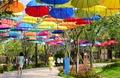 형형색색의 우산거리