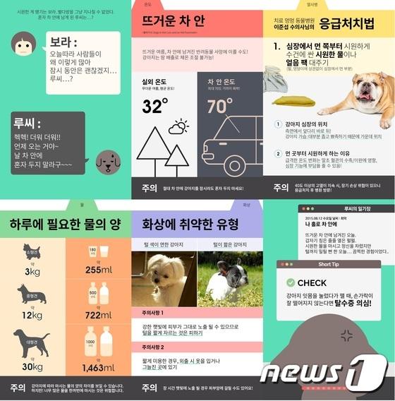 펫슬랩, 다음 스토리볼과 반려동물 콘텐츠 제휴