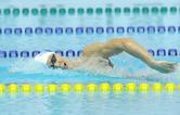 [올림픽 알고 보면 더 재밌다 ⑨] 수영에 경영만 있나 다이빙도 있고 수구도 있다