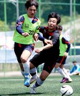 한국축구 '7부'까지 운영한다… 통합 디비전 시스템 도입
