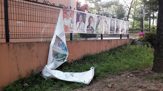 주요후보 선거벽보 훼손