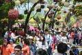 북적이는 고양국제꽃박람회
