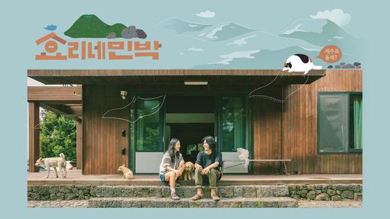 """""""여기가 효리네 민박집"""" 이효리 제주집 공개"""
