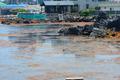 청정제주 해변 뒤덮은 중국발 '괭생이 모자반'...여름철 앞두고 '비상'