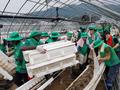 새마을운동중앙회, 수해지역 복구활동